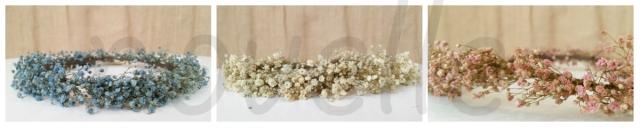 collage corona paniculata marca de agua