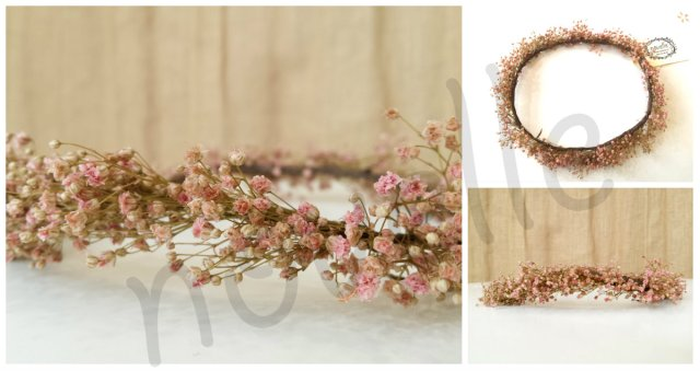 collage paniculata rosa marca agua